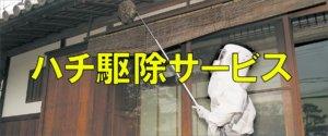 名古屋のハチ駆除サービス
