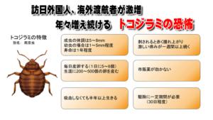トコジラミ生態、特徴