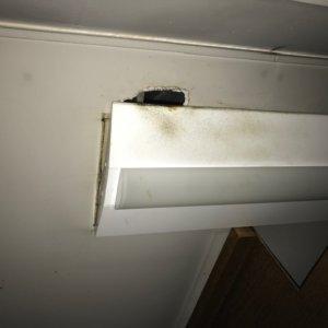 天井侵入口