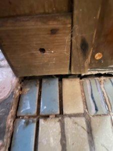 トイレ敷居、化粧柱とタイルの隙間