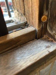 トイレ窓枠のシロアリ被害