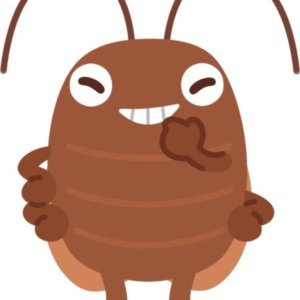 こんな飲食店は危険!!ゴキブリが発生しやすい飲食店の注意点